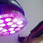 Светодиодная лампа для подсветки цветов и растений в комнате
