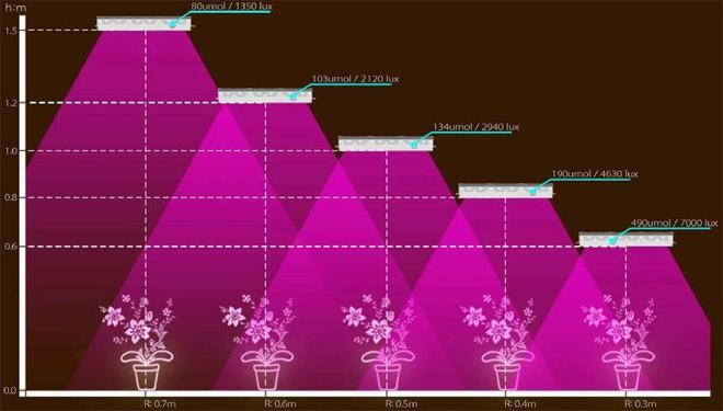 Фитолампы для растений из светодиодной ленты