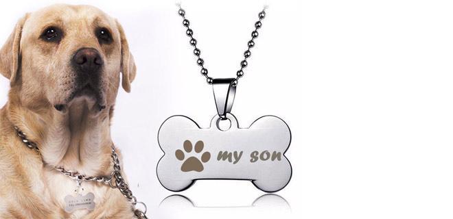 адресник на собаке