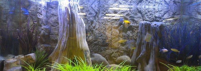 подсветка аквариума